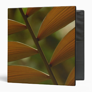 Understory palm detail. Mindo Cloud Forest. 3 Ring Binders