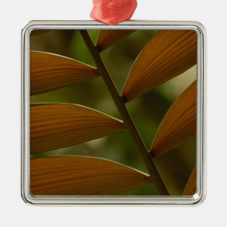 Understory palm detail. Mindo Cloud Forest. Christmas Tree Ornament