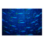 Underwater 4 print