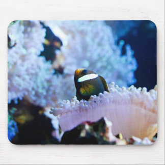 Underwater background mouse pad