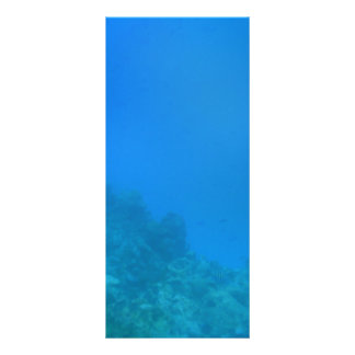 Underwater Background Scene Rack Card
