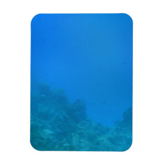 Underwater Background Scene Rectangle Magnets