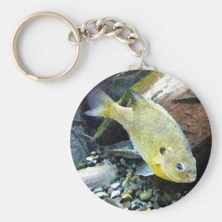 Underwater Basic Round Button Keychain