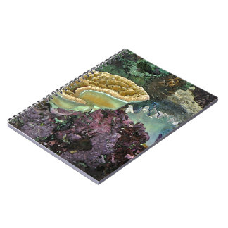 Underwater Beauty 1 Notebook