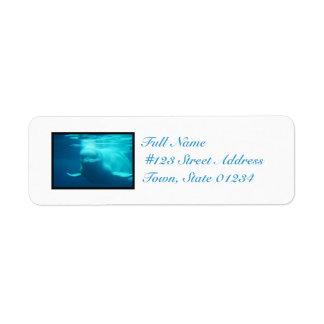 Underwater Beluga Whale Return Address Label