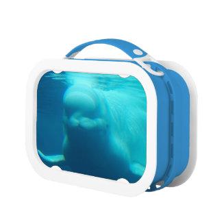 Underwater Beluga Whale Yubo Lunchbox