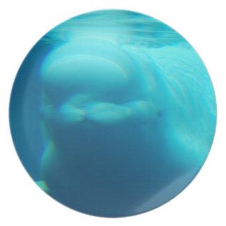 Underwater Beluga Whale Plate