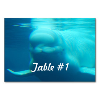 Underwater Beluga Whale Table Cards