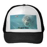 Underwater Bengal, Bengal Time Mesh Hat