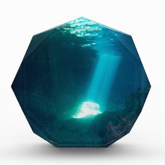 Underwater Cave Acrylic Award