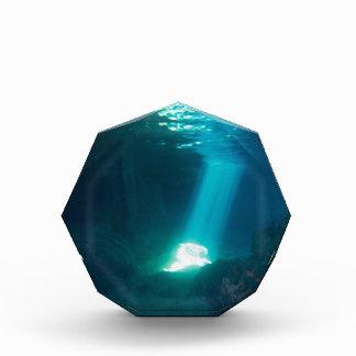 Underwater Cave Awards