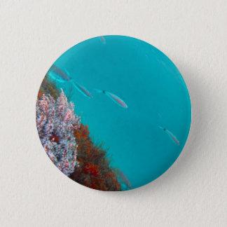 Underwater Color Button