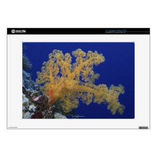 Underwater Coral Decal For Laptop
