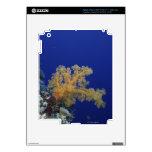 Underwater Coral iPad 3 Skin