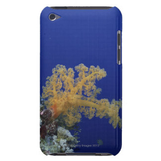 Underwater Coral iPod Touch Case