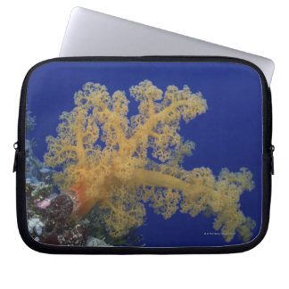 Underwater Coral Laptop Sleeve