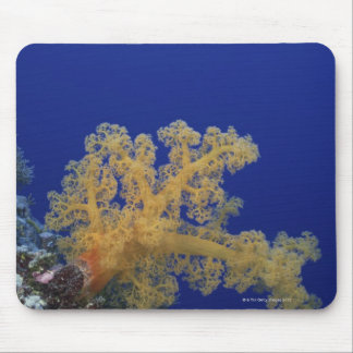 Underwater Coral Mouse Pad