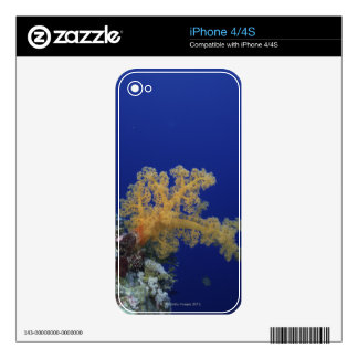 Underwater Coral Skin For iPhone 4S