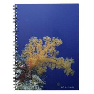 Underwater Coral Spiral Notebook