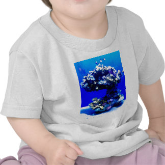 Underwater coral tee shirts