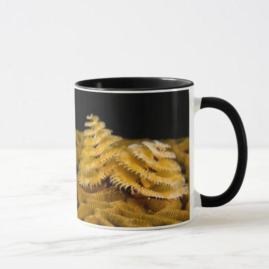 Underwater creature mug