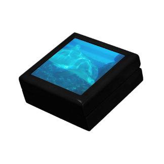 Underwater Dolphin Gift Box