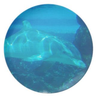 Underwater Dolphin Plate