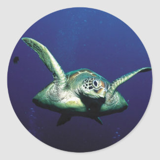 Underwater Flight Classic Round Sticker