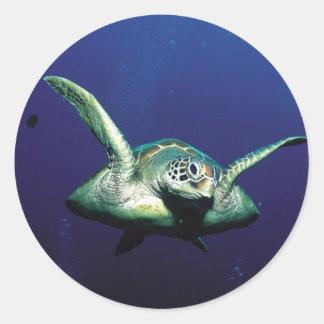 Underwater Flight Classic Round Sticker