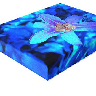 Underwater Iris by Verde Gallery Wrap Canvas