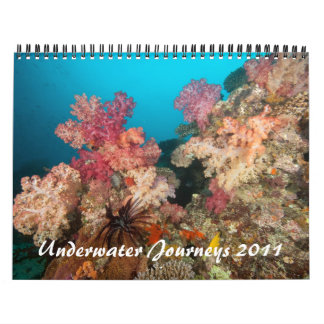 Underwater Journeys 2011 Wall Calendars