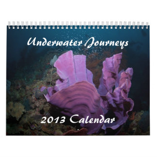 Underwater Journeys 2013 Marine Life Calendar