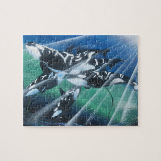 Underwater killer whale pod puzzle