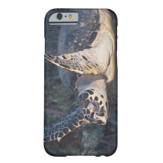Underwater Life: A Hawksbill Sea Turtle 2 Barely There iPhone 6 Case