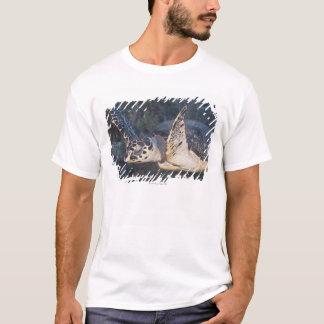 Underwater Life: A Hawksbill Sea Turtle 2 T-Shirt