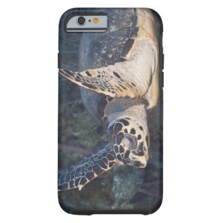 Underwater Life: A Hawksbill Sea Turtle 2 Tough iPhone 6 Case