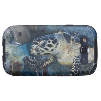 Underwater Life: A Hawksbill Sea Turtle Samsung Galaxy S3 Covers