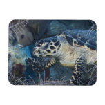 Underwater Life: A Hawksbill Sea Turtle Magnet