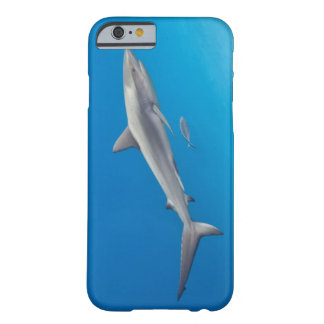 Underwater life: Carcharhinus perezi swimming in Barely There iPhone 6 Case