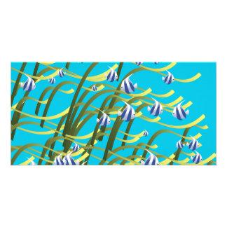 Underwater life card