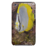 Underwater Life, FISH:  A colorful tropical Barely There iPod Covers