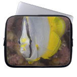 Underwater Life, FISH:  A colorful tropical Laptop Computer Sleeve