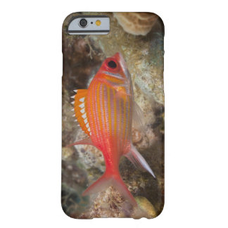 Underwater Life, FISH:  a Longjaw Squirrelfish Barely There iPhone 6 Case