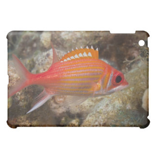 Underwater Life, FISH: a Longjaw Squirrelfish iPad Mini Covers