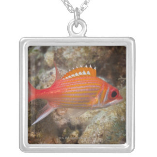 Underwater Life, FISH:  a Longjaw Squirrelfish Silver Plated Necklace