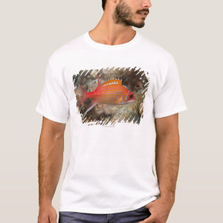 Underwater Life, FISH:  a Longjaw Squirrelfish T-Shirt