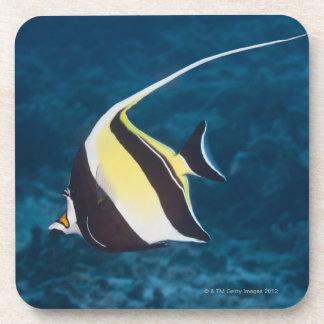 Underwater life;FISH: A Moorish Idol (Zanclus Beverage Coaster