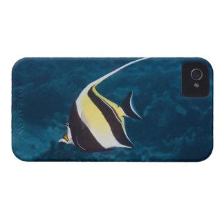 Underwater life;FISH: A Moorish Idol (Zanclus iPhone 4 Case-Mate Cases