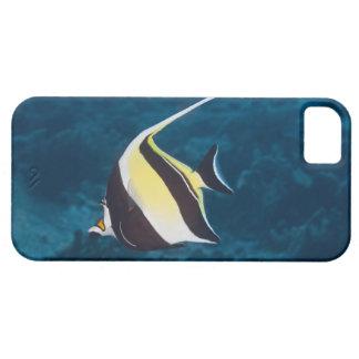 Underwater life;FISH: A Moorish Idol (Zanclus iPhone SE/5/5s Case
