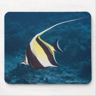 Underwater life;FISH: A Moorish Idol (Zanclus Mouse Pad